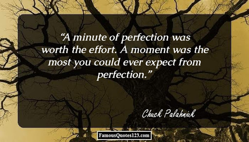 "On ""A moment was the most you could ever expect from perfection."""